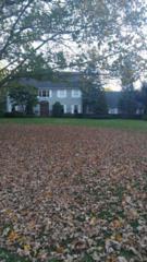15 Orchard Lane, Colts Neck, NJ 07722 (MLS #21640903) :: The Dekanski Home Selling Team