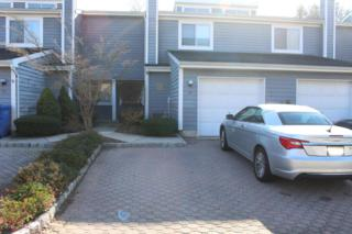 34 Rambling Meadow Court, Tinton Falls, NJ 07724 (MLS #21644367) :: The Dekanski Home Selling Team