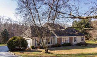 12 Briar Hill Road, Holmdel, NJ 07733 (MLS #21646090) :: The Dekanski Home Selling Team