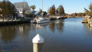 29 Flax Isle Drive, Little Egg Harbor, NJ 08087 (MLS #21646256) :: The Dekanski Home Selling Team