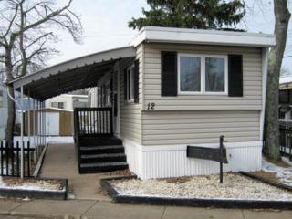 12 Avenue B, Hazlet, NJ 07734 (MLS #21646341) :: The Dekanski Home Selling Team