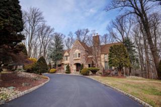 59 Takolusa Drive, Holmdel, NJ 07733 (MLS #21646670) :: The Dekanski Home Selling Team