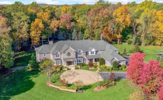 3 Michaels Way, Colts Neck, NJ 07722 (MLS #21646919) :: The Dekanski Home Selling Team