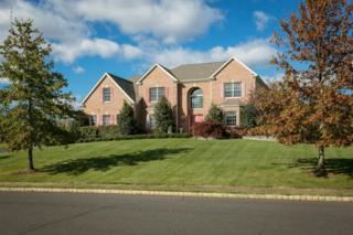 12 Mason Drive, Cream Ridge, NJ 08514 (MLS #21701156) :: The Dekanski Home Selling Team