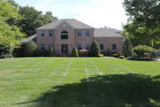 1 Blacksmith Lane, Millstone, NJ 08510 (MLS #21702651) :: The Dekanski Home Selling Team
