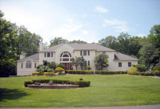 8 Stoney Brook Drive, Millstone, NJ 08510 (MLS #21705302) :: The Dekanski Home Selling Team