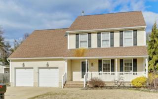 1507 Boat Landing Road, Point Pleasant, NJ 08742 (MLS #21705592) :: The Dekanski Home Selling Team
