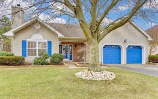 21 Molly Lane, Brick, NJ 08723 (MLS #21706034) :: The Dekanski Home Selling Team