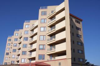 384 Ocean Avenue N 4D, Long Branch, NJ 07740 (MLS #21706145) :: The Dekanski Home Selling Team