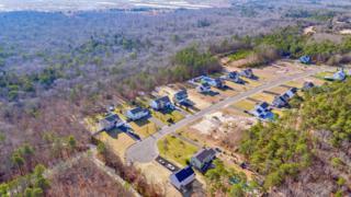 0 Eagle Ridge Lane, West Creek, NJ 08092 (MLS #21706292) :: The Dekanski Home Selling Team