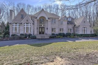 3 Ivy Court, Millstone, NJ 08535 (MLS #21706644) :: The Dekanski Home Selling Team