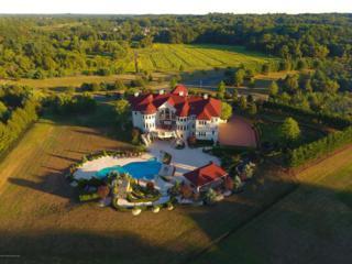 8 Palazzo Grande, Morganville, NJ 07751 (MLS #21707075) :: The Dekanski Home Selling Team