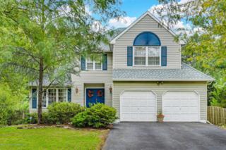 206 Down Hill Run, Toms River, NJ 08755 (MLS #21707516) :: The Dekanski Home Selling Team
