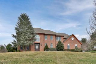 3 Flemer Court, Holmdel, NJ 07733 (MLS #21707729) :: The Dekanski Home Selling Team
