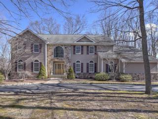 18 David Court, Millstone, NJ 08535 (MLS #21707764) :: The Dekanski Home Selling Team