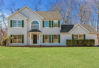 10 Tall Woods Drive, Manalapan, NJ 07726 (MLS #21709220) :: The Dekanski Home Selling Team