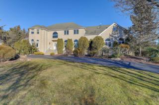 7 White Cedar Lane, Holmdel, NJ 07733 (MLS #21709247) :: The Dekanski Home Selling Team