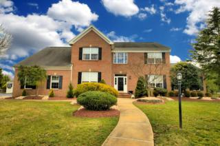 3 Lonnie Drive, Allentown, NJ 08501 (MLS #21709352) :: The Dekanski Home Selling Team