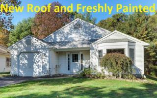 28 Mallard Drive, Brick, NJ 08724 (MLS #21710165) :: The Dekanski Home Selling Team