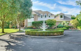 11 Rivers Edge Drive, Colts Neck, NJ 07722 (MLS #21711035) :: The Dekanski Home Selling Team