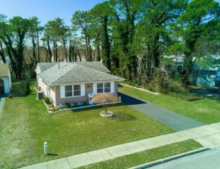 87 Seaview Avenue, Brick, NJ 08723 (MLS #21711492) :: The Dekanski Home Selling Team
