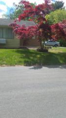 9 W Lake Drive A, Manchester, NJ 08759 (MLS #21719247) :: The Dekanski Home Selling Team