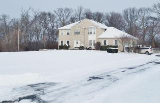 20 Babbitt Way, Allentown, NJ 08501 (MLS #21626220) :: The Dekanski Home Selling Team