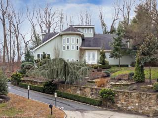 10 Jayhawk Way, Holmdel, NJ 07733 (MLS #21644354) :: The Dekanski Home Selling Team