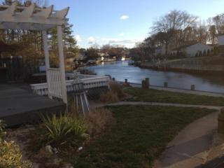 9 Lenape Trail, Brick, NJ 08724 (MLS #21707829) :: The Dekanski Home Selling Team
