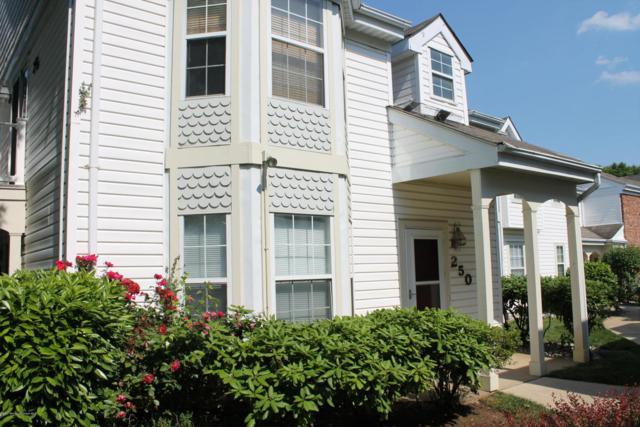 250 Tulip Lane, Freehold, NJ 07728 (MLS #21722887) :: The Dekanski Home Selling Team