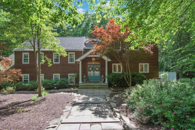 17 Kingfisher Drive, Middletown, NJ 07748 (MLS #21724436) :: The Dekanski Home Selling Team