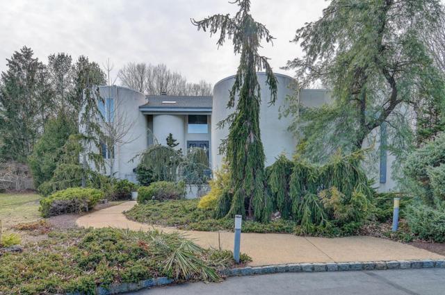 45 Nikki Court, Morganville, NJ 07751 (MLS #21735623) :: The Dekanski Home Selling Team
