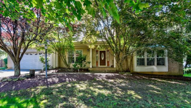 6 Meadow Lane, Marlboro, NJ 07746 (MLS #21738165) :: The Dekanski Home Selling Team