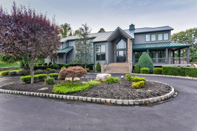17 Summer House Hill Road, Holmdel, NJ 07733 (MLS #21840634) :: Vendrell Home Selling Team