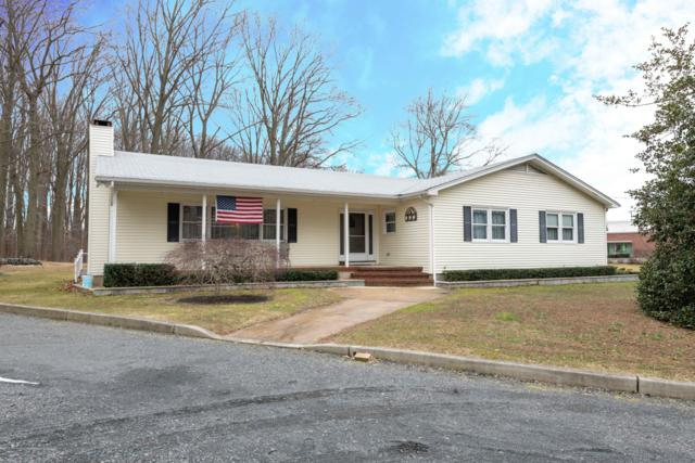 668 Laurel Avenue, Holmdel, NJ 07733 (MLS #21906581) :: Vendrell Home Selling Team