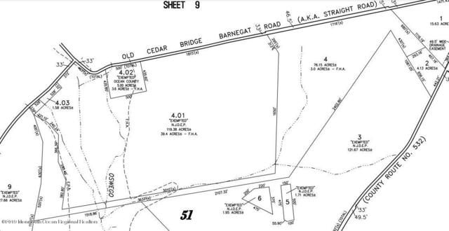 320 Old Cedar Bridge Road, Barnegat, NJ 08005 (MLS #21921453) :: The MEEHAN Group of RE/MAX New Beginnings Realty