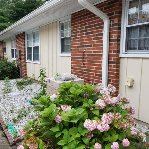 35D Cambridge Court #1004, Lakewood, NJ 08701 (MLS #21927924) :: The Dekanski Home Selling Team