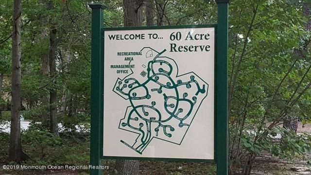 2002 Begonia Court, Jackson, NJ 08527 (MLS #21933124) :: The MEEHAN Group of RE/MAX New Beginnings Realty