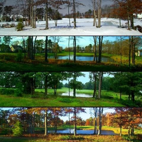 6 Hazeltine Lane, Jackson, NJ 08527 (MLS #22003775) :: The Dekanski Home Selling Team