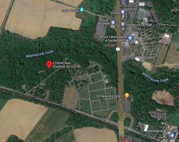 37 Ilene Way, Freehold, NJ 07728 (MLS #22115218) :: William Hagan Group