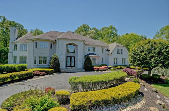 3 Beechwood Grove Court, Holmdel, NJ 07733 (MLS #21804028) :: The Dekanski Home Selling Team