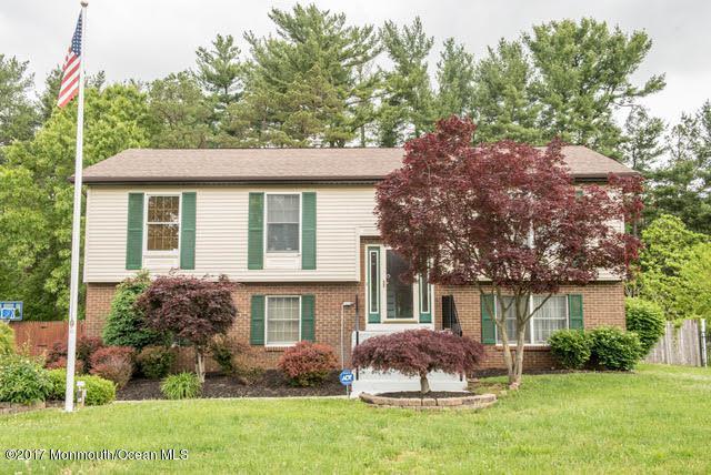 11 Mulberry Court, Jackson, NJ 08527 (MLS #21720363) :: The Dekanski Home Selling Team