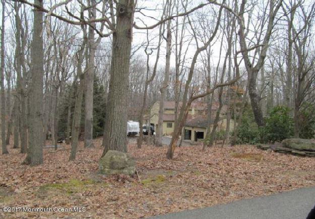 15 Deer Trail Drive, Millstone, NJ 08510 (MLS #21722828) :: The Dekanski Home Selling Team
