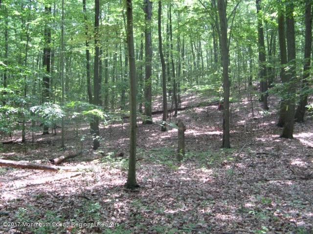 0 Harmony Hill Road - Photo 1