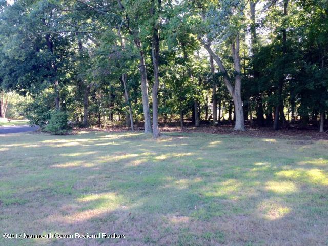 2137 -B Old Mill Road, Sea Girt, NJ 08750 (MLS #21738609) :: The Dekanski Home Selling Team