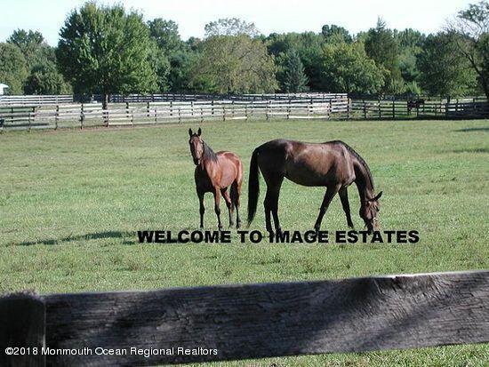 34 Cranbury Brook Drive, Perrineville, NJ 08535 (MLS #21833448) :: The MEEHAN Group of RE/MAX New Beginnings Realty