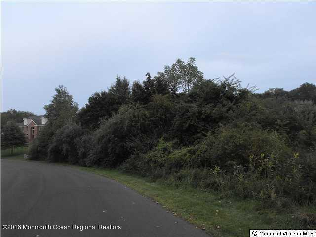 3 Lisa Court, Millstone, NJ 08510 (MLS #21846057) :: The MEEHAN Group of RE/MAX New Beginnings Realty