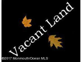 29 8th Street, Barnegat, NJ 08005 (MLS #21925782) :: The Dekanski Home Selling Team