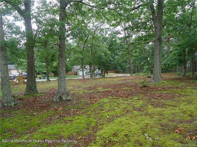 140 Chestnut Street, Little Egg Harbor, NJ 08087 (MLS #21938274) :: The CG Group | RE/MAX Real Estate, LTD