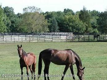 259 Sweetmans Lane, Millstone, NJ 08535 (MLS #22109616) :: The MEEHAN Group of RE/MAX New Beginnings Realty